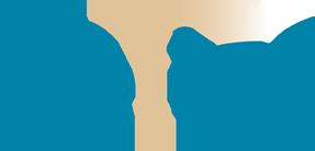 Heliqs Logo